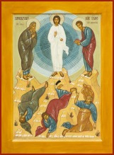 transfiguration-bvc